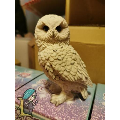 Snowy Watch owl (small)